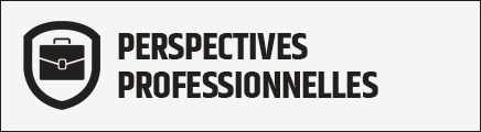 Bouton Perspectives professionnels